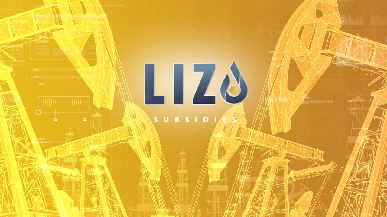 Lizo | Digital transformation in the oil & gas industry: seamless scaling and automatic updating